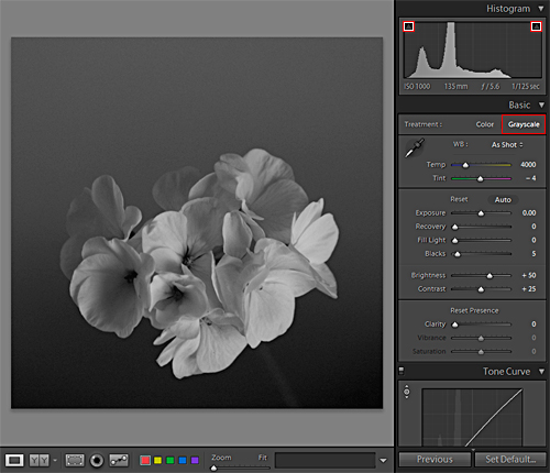 greyscale for the preset in lightroom