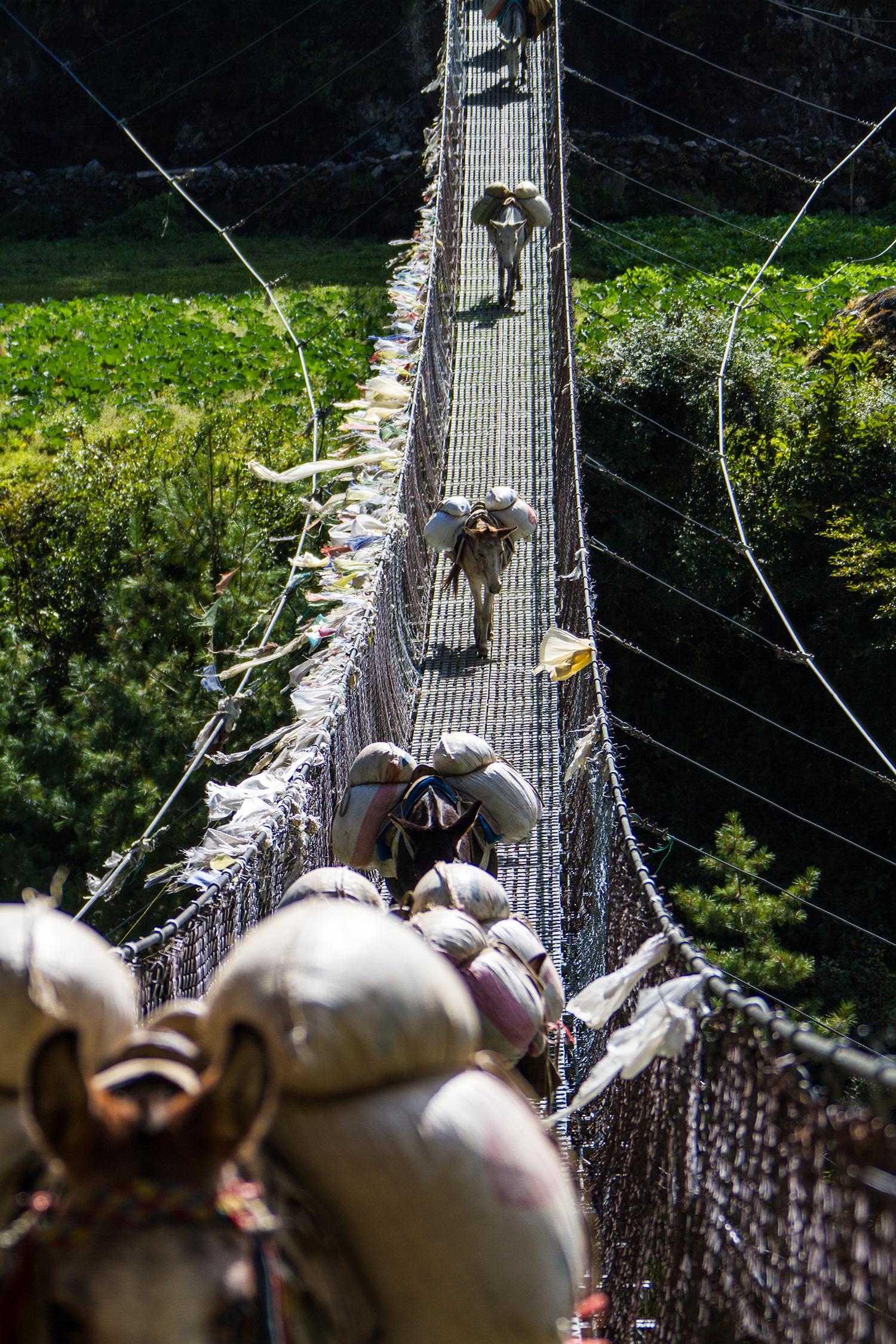 Bridge perspective breaks the leading lines rules