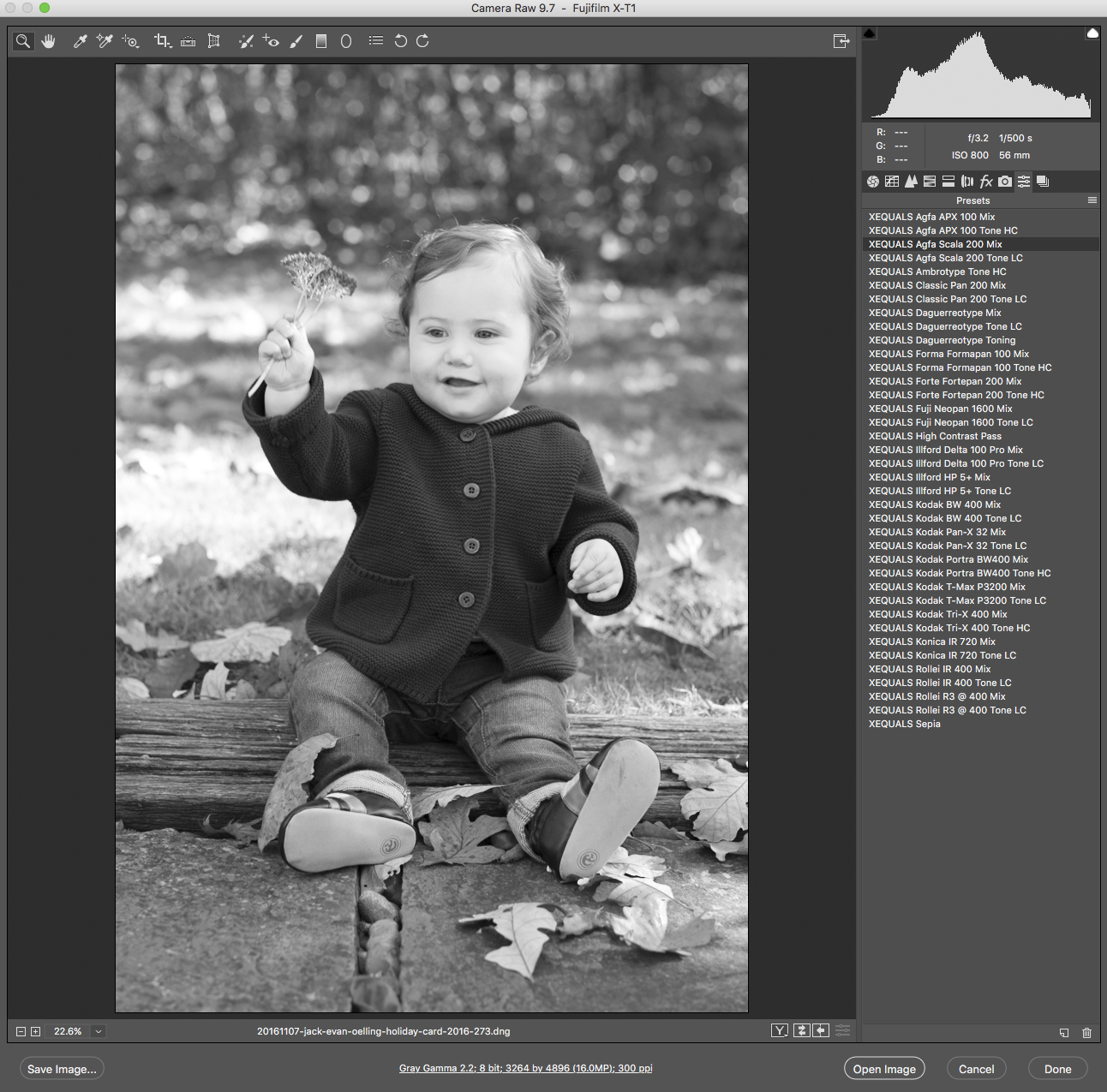 Working with XEQUALS Black & White for Photoshop is simple and easy – the added benefit being you can access them directly in Adobe Bridge as well. We've pulled some examples of exactly how you can integrate the solution into your own workflow once you have them installed.