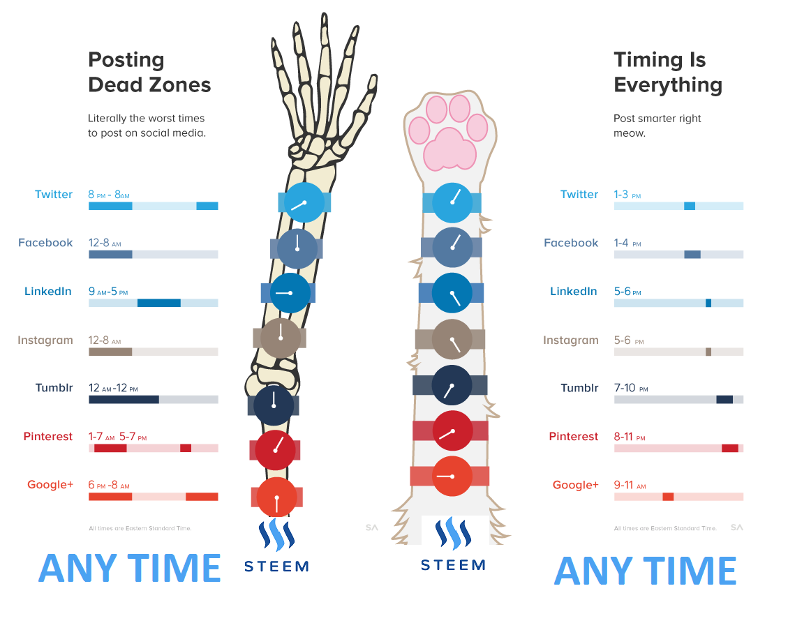 This graphic shows social media dead times and optimal times.