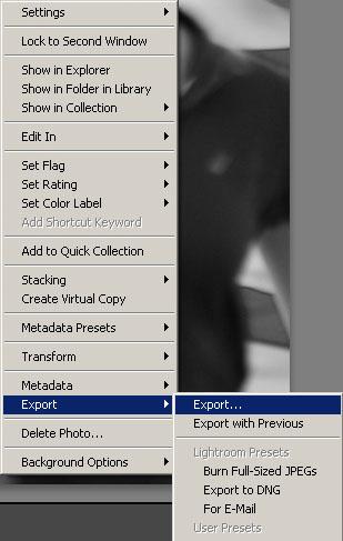 The export menu, as found in the contextual menu.