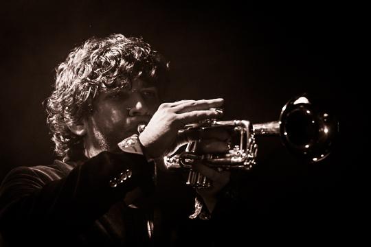 Trumpeter in the Dark