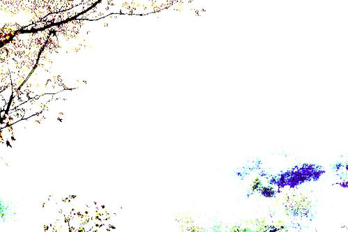 img_qf_08