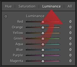 luminance21