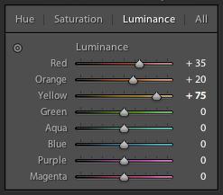 luminance31