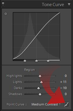 edit point curve button in tone curve